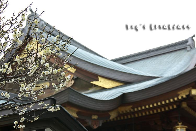 20090121i